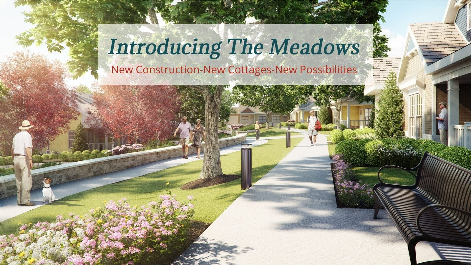 Introducing The Meadows!